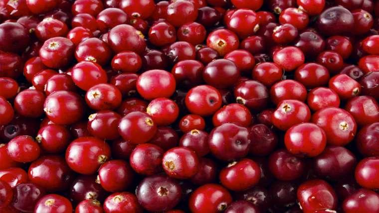 O poder da Cranberry para sua dieta