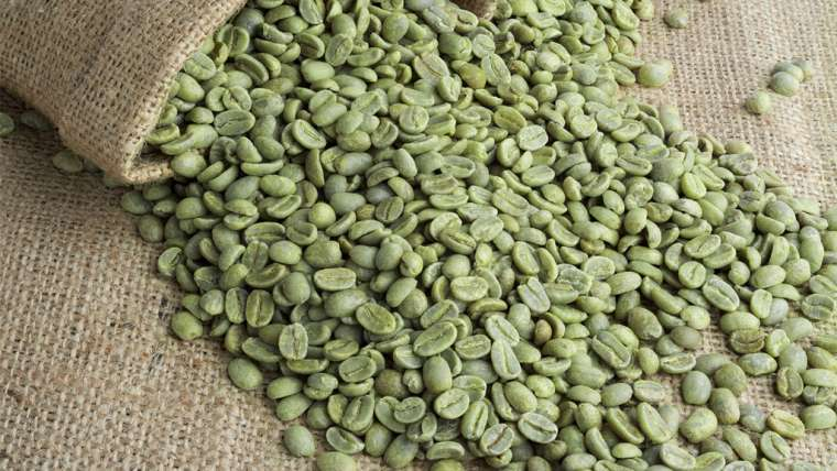 Café verde: a mais nova aposta para o emagrecimento saudável