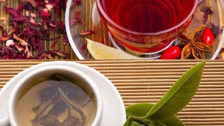 Chá de Hibisco x Chá Verde: qual o melhor chá para turbinar o emagrecimento