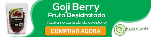 goji-fruta-desidratada-600x150