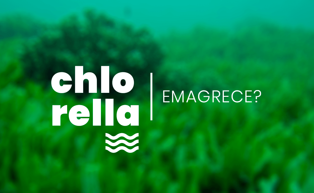 Chlorella: Emagrece?